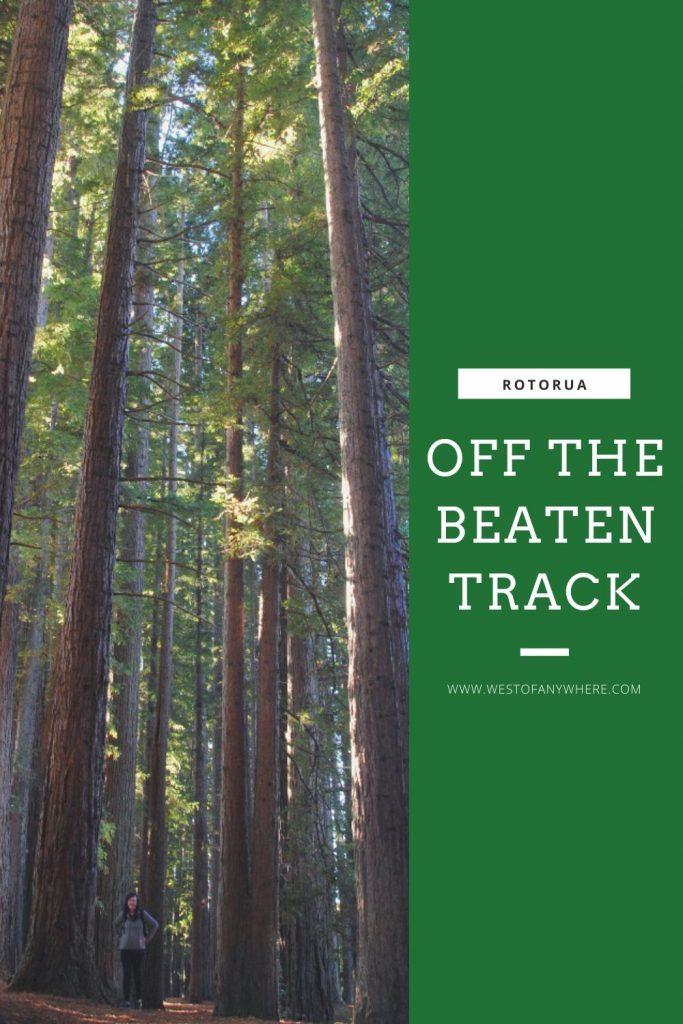 Off the beaten track Rotorua - Redwood Trees