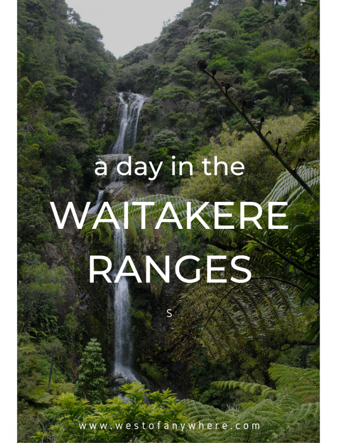 A day in the Waitakere Ranges